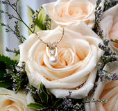 Jewels and Roses. Beautiful roses arranged with delicate diamond, pearl and gold necklace Stock Images