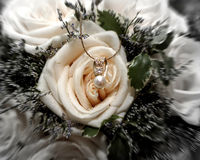 Jewels and Roses. Beautiful roses arranged with delicate diamond, pearl and gold necklace with blur and color effect applied Royalty Free Stock Photo