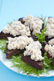 Jewish appetizer with herring Stock Image