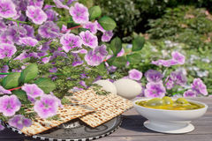 Jewish celebrate pesach passover with eggs,olive, matzo and flowers on nature background Stock Photo