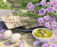 Jewish celebrate pesach passover with eggs,olive, matzo and flowers Royalty Free Stock Image