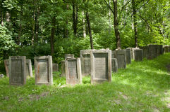 Jewish Cemetary - Lezajsk - Poland. Jewish Cemetary in Lezajsk - Poland royalty free stock photo