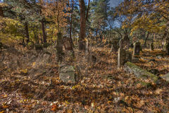 Jewish cemetary. Otwock, Poland - October 28, 2015:  Devastated Jewish cemetary in Otwock town Royalty Free Stock Photo