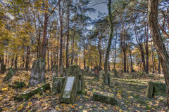 Jewish cemetary. Otwock, Poland - October 28, 2015:  Devastated Jewish cemetary in Otwock town Royalty Free Stock Photography