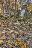 Jewish cemetary. Otwock, Poland - October 28, 2015:  Devastated Jewish cemetary in Otwock town Royalty Free Stock Photos