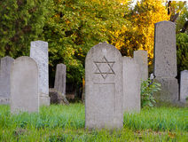 Jewish Cemetery Royalty Free Stock Photo