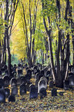 Jewish cemetery. Old graves at historic Jewish cemetery, Okopowa Street in Warsaw, Poland Royalty Free Stock Photo
