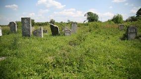 Jewish cemetery Belz stock video footage