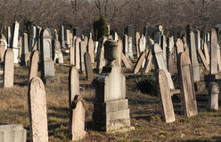 Jewish cemetery in Budapest Royalty Free Stock Photos