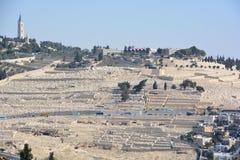 Jewish Cemetery Royalty Free Stock Photos