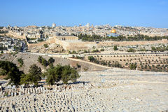 Jewish Cemetery Royalty Free Stock Photo