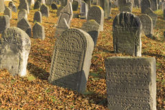 Jewish cemetery in Libochovice. Very important Jewish cemetery in Libochovice (Czech Republic), founded in 1583 with many tombstones of Renaissance and Baroque Royalty Free Stock Image
