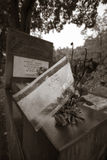 Jewish cemetery in Lodz, Poland Royalty Free Stock Photos