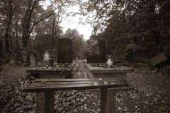 Jewish cemetery in Lodz, Poland Royalty Free Stock Photo