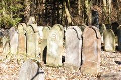 Jewish cemetery. Luze, Czech Republic Stock Image