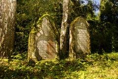 Jewish cemetery - Marianske Lazne - Czech Republic. Photo of gravestones on the Jewish cemetery in Marianske Lazne Royalty Free Stock Image