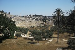 Jewish cemetery on Mount of Olives Stock Photography