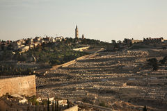 Jewish Cemetery on Mount of Olives in Jerusalem. Israel Stock Photos