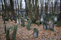 Jewish cemetery. Old graves at historic Jewish cemetery, Okopowa Street in Warsaw, Poland Stock Images