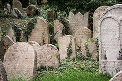 Jewish cemetery in Prague Royalty Free Stock Image