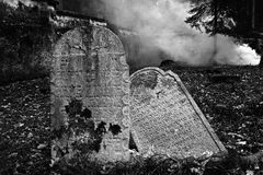Jewish Cemetery in Puclice. Royalty Free Stock Image