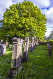 Jewish cemetery in St. Wendel Royalty Free Stock Photos