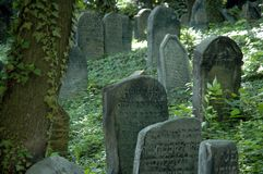 Jewish cemetery. Tombstones on a jewish cemetery, situated in a forest Royalty Free Stock Image