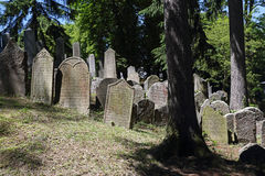 Jewish cemetery Stock Images