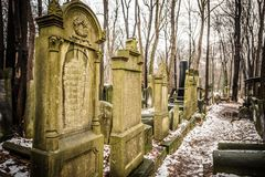 Jewish Cemetery. Warsaw, Poland - January 1, 2015: Historic old Jewish Cemetery in winter Stock Images