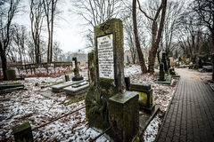 Jewish Cemetery. Warsaw, Poland - January 1, 2015: Historic old Jewish Cemetery in winter Royalty Free Stock Image