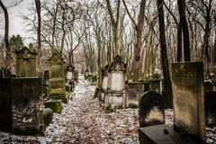 Jewish Cemetery. Warsaw, Poland - January 1, 2015: Historic old Jewish Cemetery in winter Stock Image