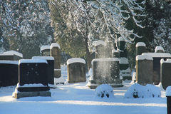 Jewish cemetery in winter Stock Photography