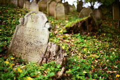 Jewish cemetry Royalty Free Stock Photography