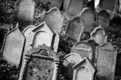Jewish cemetry Royalty Free Stock Image