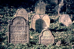 Jewish cemetry Royalty Free Stock Photos