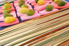 Jewish citrons display. Sukkot - Tabernacles Stock Images