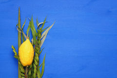 Jewish fall festival of Sukkot. Traditional symbols & x28;The four species& x29;: Etrog, lulav, hadas, arava Stock Image