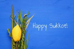 Jewish fall festival of Sukkot. Traditional symbols & x28;The four species& x29;: Etrog, lulav, hadas, arava.  royalty free stock images