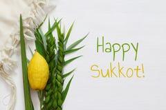 Jewish fall festival of Sukkot. Traditional symbols & x28;The four species& x29;: Etrog, lulav, hadas, arava Stock Photos