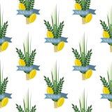 Jewish festival of Sukkot traditional seamless pattern judaism background religion festival citrus willow illustration. Citron leaf lemon succot festive fruit royalty free illustration