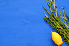 Jewish festival of Sukkot. Traditional symbols The four species: Etrog, lulav, hadas, arava.  Royalty Free Stock Image