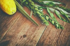 Jewish festival of Sukkot. Traditional symbols & x28;The four species& x29;: Etrog, lulav, hadas, arava. Jewish festival of Sukkot. Traditional symbols Stock Photo