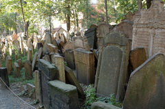 Jewish Graveyard. Set of tablets accumulated in the Jewish Cemetery of Prague Royalty Free Stock Photo