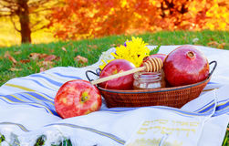 Jewish holiday Rosh Hashana new year celebration. With honey jar and apples Royalty Free Stock Photos
