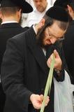 Jewish Holiday - Sukkot Stock Image