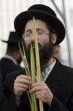 Jewish Holiday - Sukkot Royalty Free Stock Image