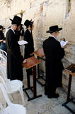 Jewish men praying at the Western wall Royalty Free Stock Images