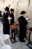 Jewish men praying at the Western wall royalty free stock images