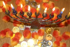 Jewish menorah with lighted candles and chocolate coins Hanukkah and Judaic holiday symbol. Jewish menorah with lighted candles and chocolate coins and flowers Royalty Free Stock Image