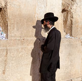 Jewish praying at the western wall Royalty Free Stock Images